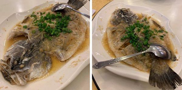 全家福客家菜館竹北館。清蒸鱸魚