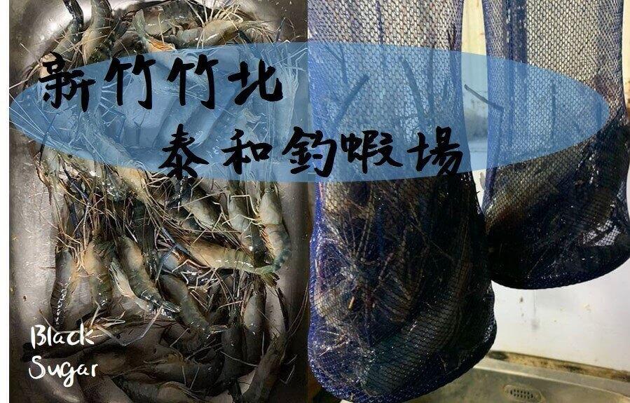 新竹竹北新泰和釣蝦/新竹釣蝦推薦/最適合新手釣蝦場/釣不到老闆教到你會釣