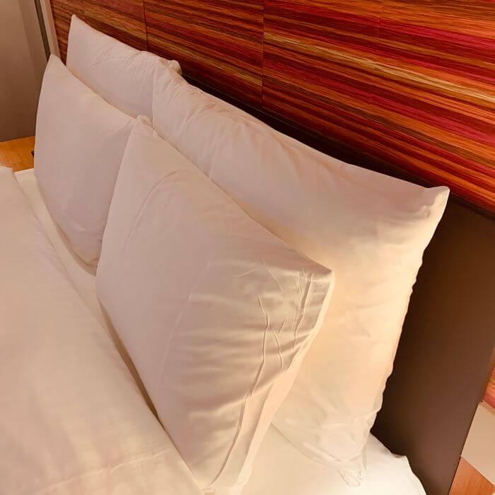 新竹芙洛麗大飯店/枕頭給兩個,舒服