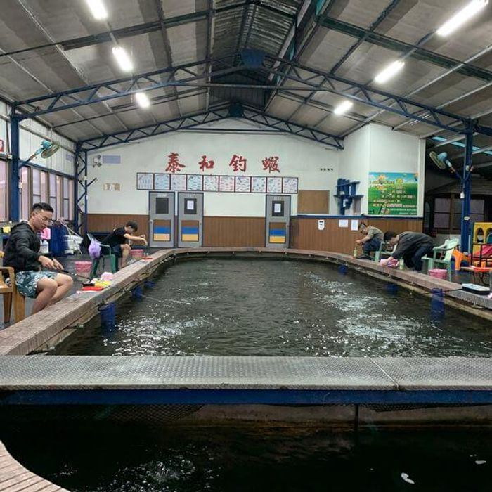 新竹竹北新泰和釣蝦場。新竹竹北釣蝦推薦。環境