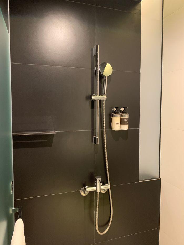 台南東區住宿/老爺行旅The Place Tainan/台南住宿飯店酒店推薦/設計風格結合在地元素飯店乾濕分離