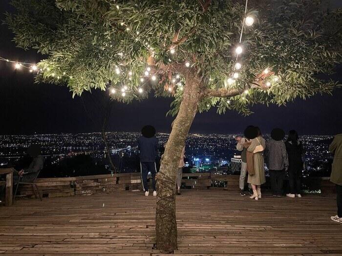 空ㄟ農場/宜蘭礁溪夜景/親子景點/往美拍照打卡景點樹